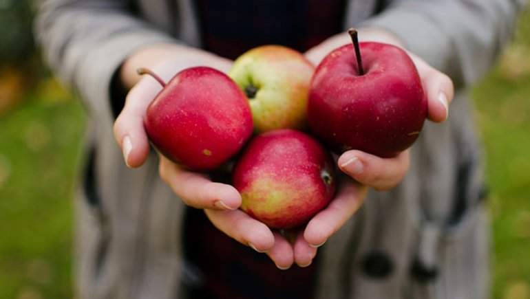 Is Apples Good For Weight Loss?